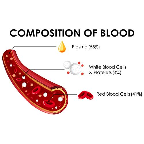 Treating Severe Anemia with HBOT
